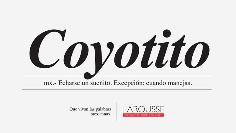 Coyotito