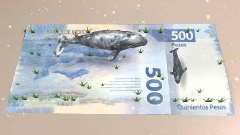Nuevos billetes de México