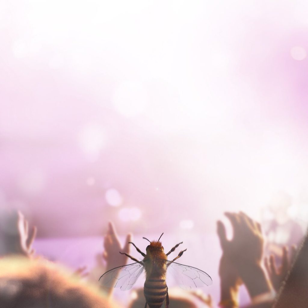 abeja influencer